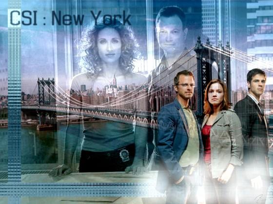 Les experts Manhattan 03