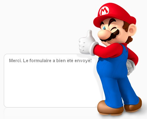Nintendo - Confirmation message (10-12-2013)