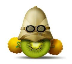 033_-_Kiwi_Explorateur__1001_pts_.jpg